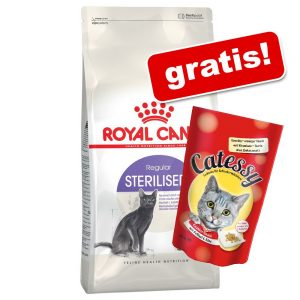 10 kg Royal Canin + 65 g Catessy Knapersnacks! - Fit 32