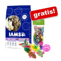 10/15 kg Iams torrfoder + set av kattleksaker - Pro Active Health Adult Sea Fish (10 kg)
