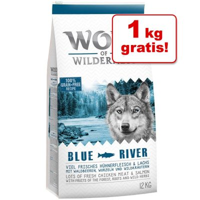 12 + 1 kg på köpet! 13 kg Wolf of Wilderness torrfoder - Senior Green Fields - Lamb