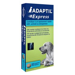 ADAPTIL® Express tabletter - 10 st