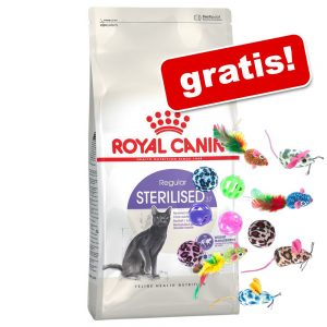 10 kg Royal Canin + kattleksaker på köpet! - Indoor Long Hair