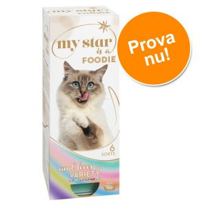 My Star is a Foodie - blandpack med mousse - 10 x 90 g (4 olika sorter)