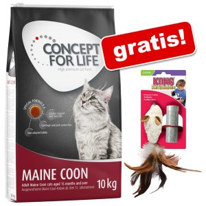 Stor påse Concept for Life torrfoder + Kong feather mouse på köpet! - All Cats 10 kg