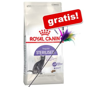 10 kg Royal Canin + fjädervippa på köpet! - British Shorthair Adult