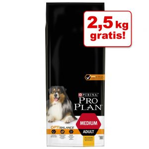 12 / 14 kg Pro Plan hundmat + 2 / 2,5 kg på köpet! - Large Adult Robust Lamb & Rice OPTIDIGEST 14 + 2,5 kg (16,5 kg)