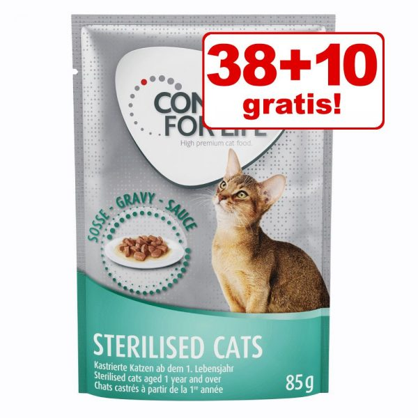38 + 10 på köpet! Concept for Life våtfoder 48 x 85 g - Sensitive Cats - i gelé