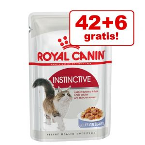 42 + 6 på köpet! Royal Canin våtfoder 48 x 85 g - Ultra Light i sås