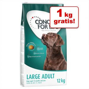 11 kg + 1 kg på Köpet! Concept for Life hundfoder - Medium Light