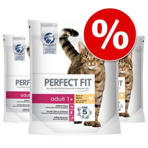 Ekonomipack: Perfect Fit kattfoder till sparpris! Senior Kyckling (6 x 750 g)