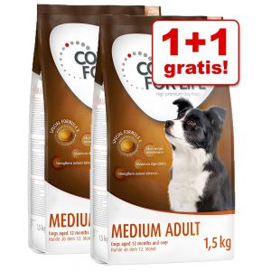 1+1 på köpet! 2 x 1,5 kg Concept for Life hundfoder - Mini Adult