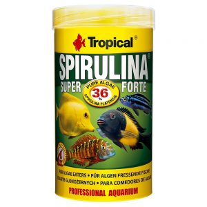Tropical Super Spirulina Forte 36 % - 250 ml